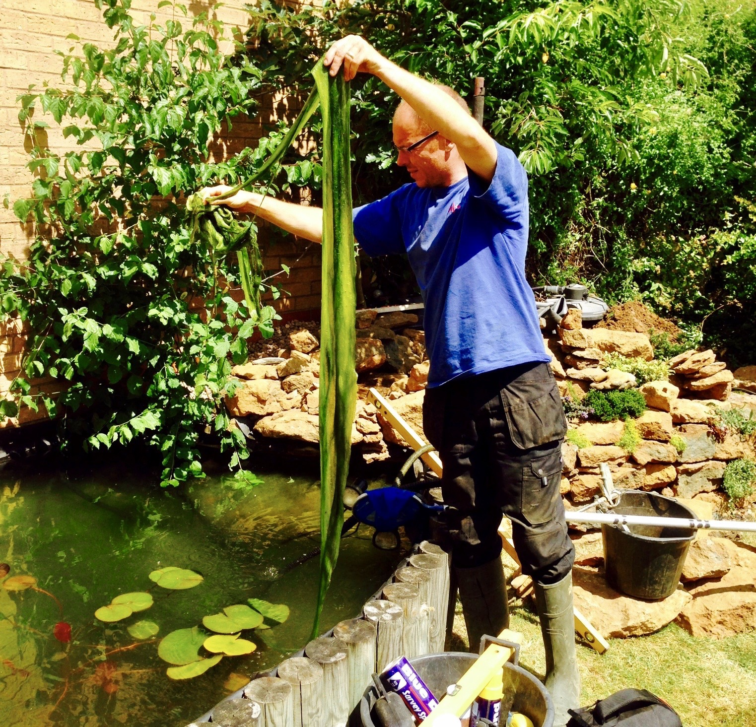 Pond Maintenance
